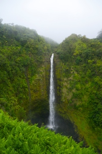 Akaka Falls – Photo by Matt Segall