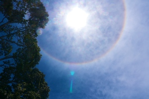 Rainbow Sun – Photo by Matt Segall
