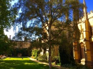 Exeter Fellows' Garden – Photo by Becca Tarnas
